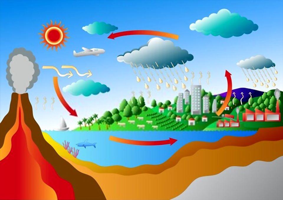 Karbon Döngüsü Coğrafya 11