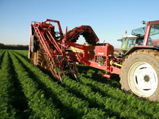 Entansif tarım