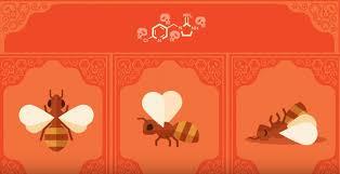 Arıların ölümleri Parazitler, Zehirler ve İnsanlar