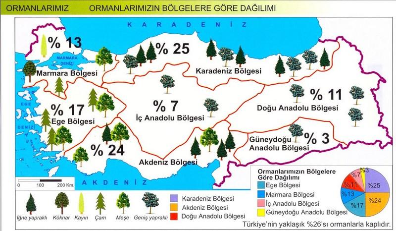Türkiye'de Ormanların Coğrafi Bölgelere Göre Dağılımı
