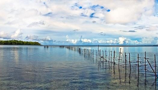 Kıyısal Ekosistemler Türkiye Lagüner Sahaları ve Dalyanları