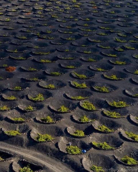Lanzarote adası