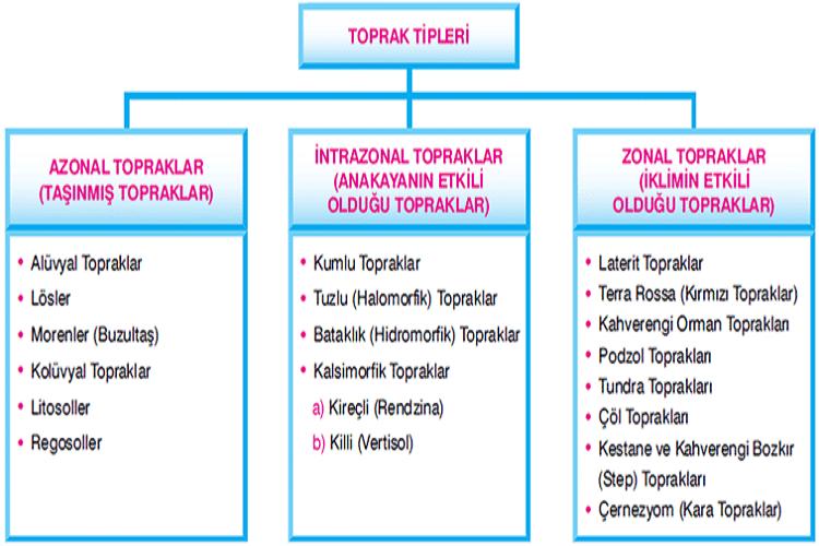 Türkiye'de Toprak Tipleri ve Kullanımı
