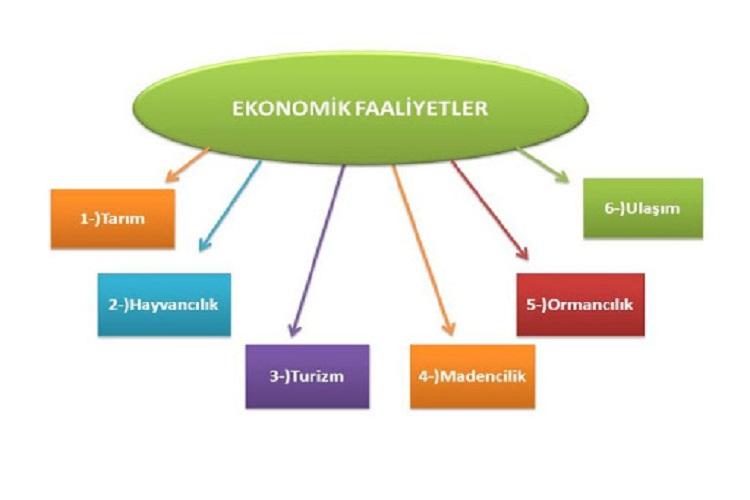 Ekonomik Faaliyetlerin Sınıflandırılması