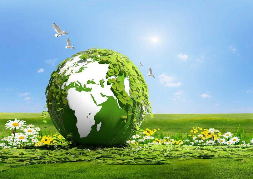 Çevre Sorunlarının Önlenmesinde Geliştirilebilecek Stratejiler