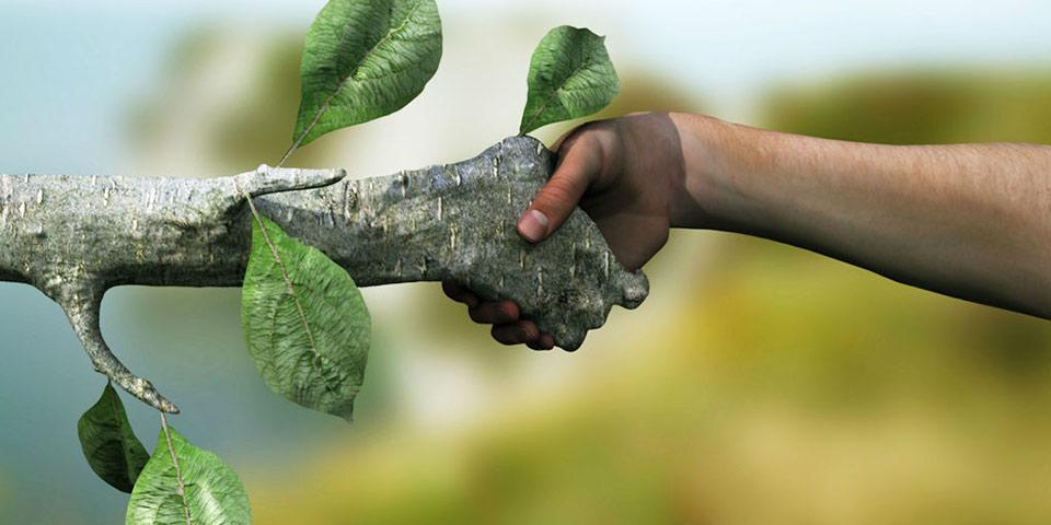 Doğal kaynakların etkin kullanımında çevre planlamasının önemi