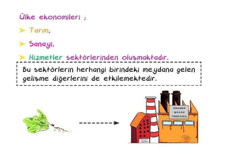 Türkiye Ekonomisinin Sektörel Dağılımı
