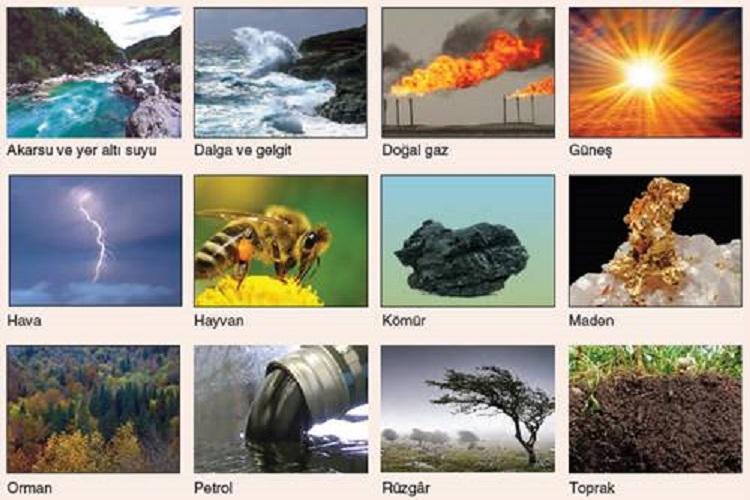 Doğal Kaynaklar ve Ekonomi İlişkisi