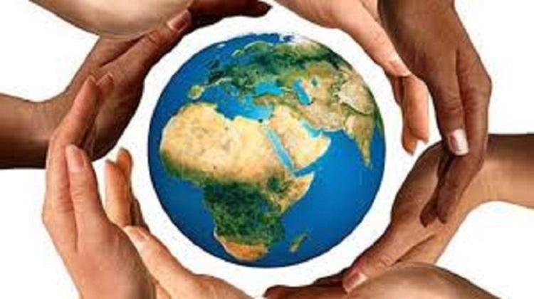 Çevresel Örgütler ve Özellikleri Konusu