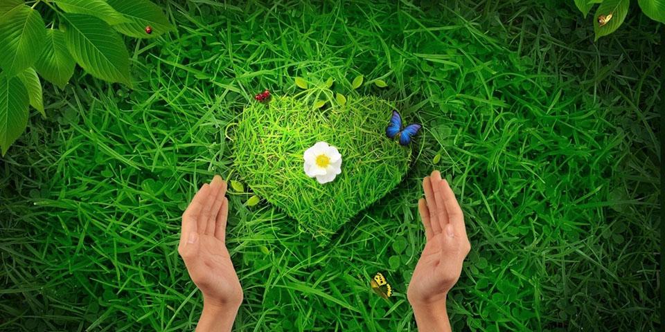 Çevre Koruma Uygulamaları ve Doğayı koruma bilinci