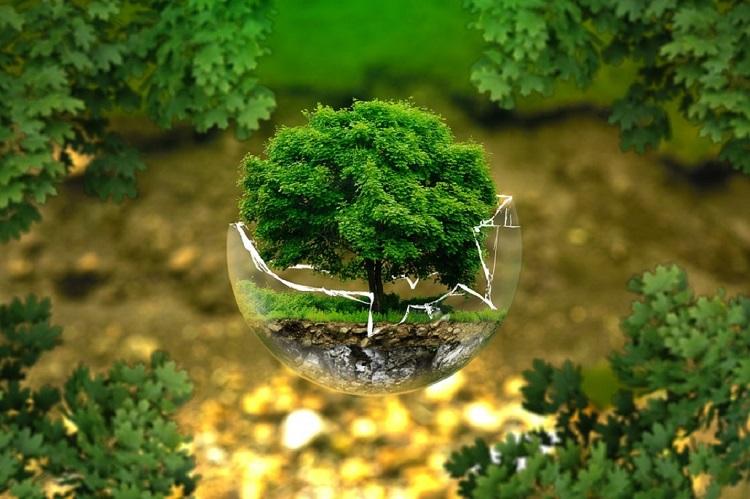 Doğal Çevremizin Sınırlılığı